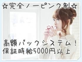 保証時給5000円以上!完全ノーピンクのソフトサービスなのに稼げます!